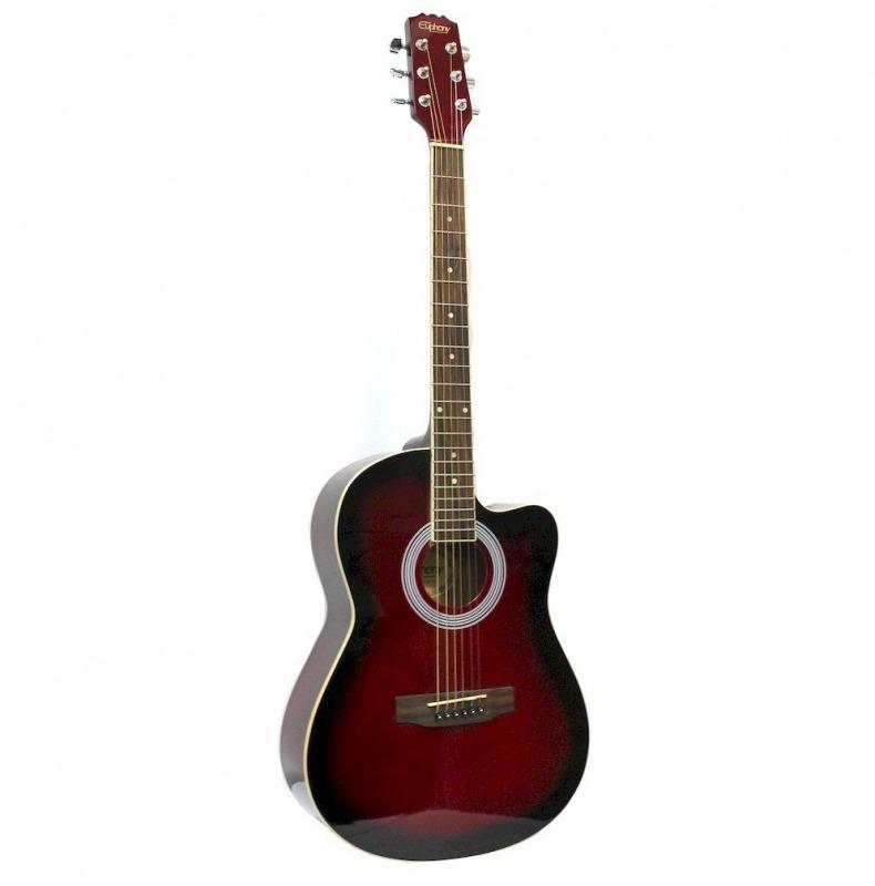 Акустическая гитара EUPHONY EW-100 TWRS