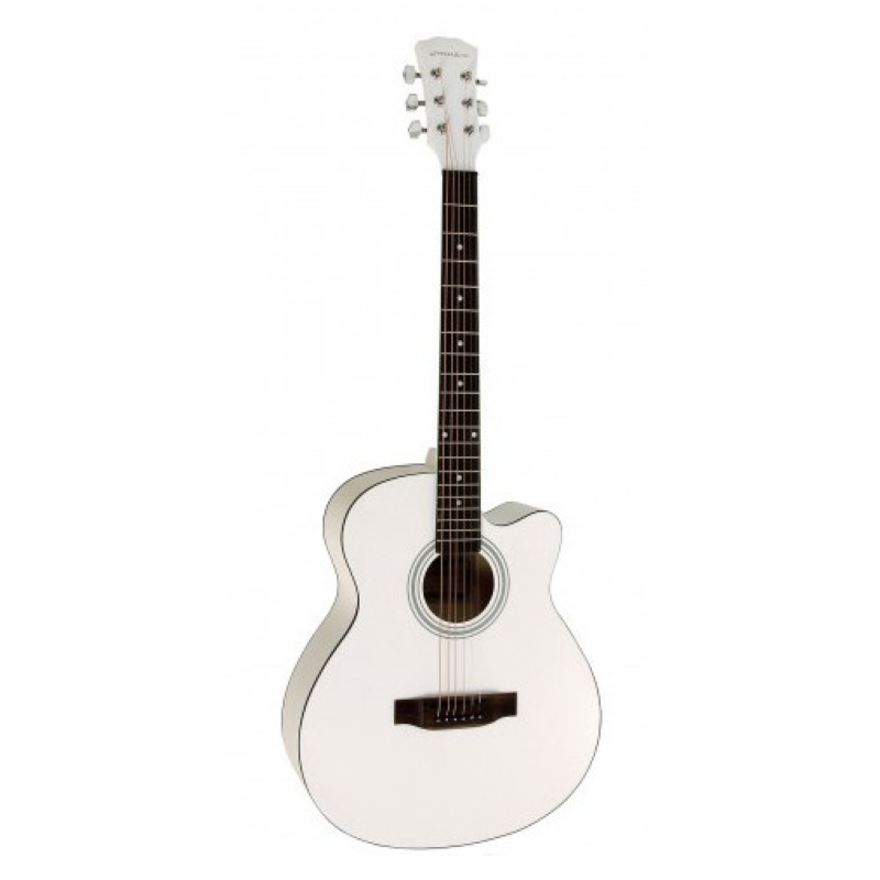 Акустическая гитара Elitaro E4020 WH