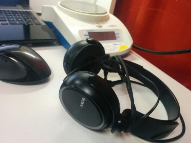 Sony MDR_XB 250