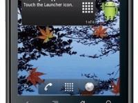Телефон Huawei U8150